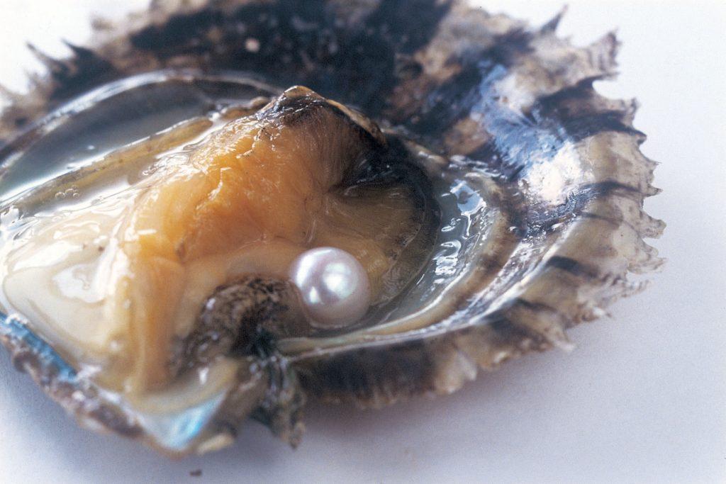 無調色真珠とは、いわば「すっぴん」の真珠